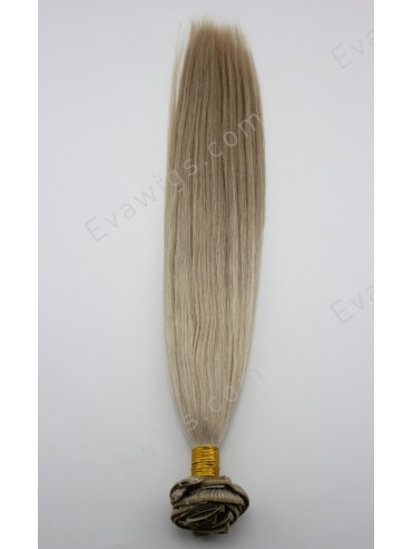 #101 Virgin Human Hair Clip in Hair Extension