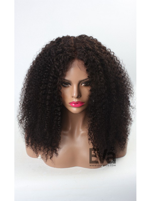 Natural Afro Curly Human Hair Full Lace Wig Curly Evawigs