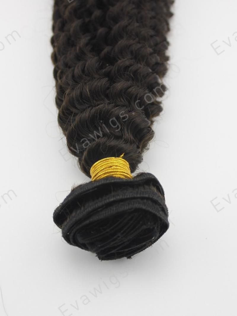 Curly Human Hair Clip In Hair Extension Hair Extensions Evawigs